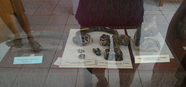 Museum Purbakala di Tambaksari-Ciamis
