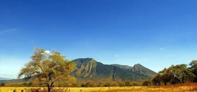 Pesona Taman Nasional Baluran di Jawa Timur