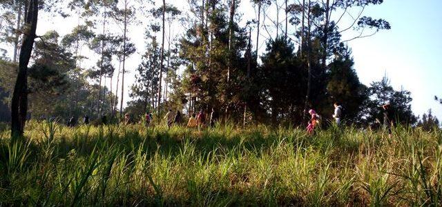 Penginapan dengan sarana bermain di Lembang